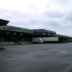 Vente Entrepôt Strasbourg 25000 m²