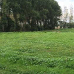 Terrain  de 1097 m²  Ressons-le-Long  (02290)