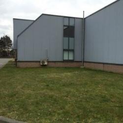 Location Local d'activités Wambrechies 351 m²