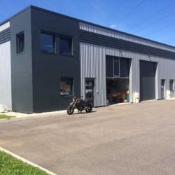 Location Local d'activités Toussieu 175 m²
