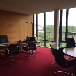 Location Bureau Lyon 7ème 1957 m²