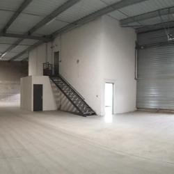 Location Local d'activités Décines-Charpieu 872 m²