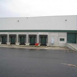 Location Entrepôt Pierrelaye 15346 m²