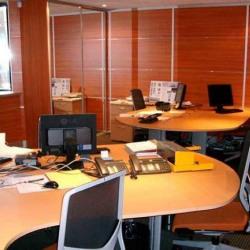Location Bureau Jouy-en-Josas 690 m²