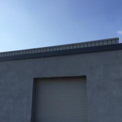 Location Local d'activités Genay 640 m²