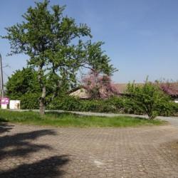 Vente Terrain Brindas 520 m²