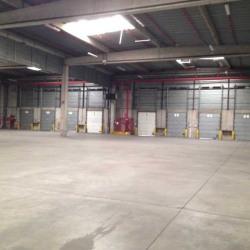 Location Entrepôt Vénissieux 2413 m²