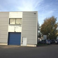 Location Local d'activités Wissous 256 m²