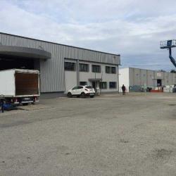 Location Entrepôt Le Haillan 1083 m²