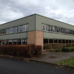 Vente Local d'activités Saint-Thibault-des-Vignes 480 m²