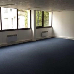 Location Bureau Joinville-le-Pont 320 m²