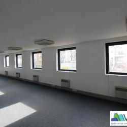 Vente Bureau Saint-Maurice (94410)