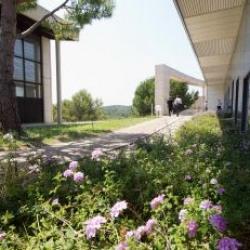 Location Bureau Sophia Antipolis 14248 m²