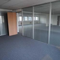 Location Bureau Suresnes 462 m²