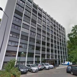 Vente Bureau Villeurbanne 531 m²