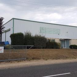 Vente Local d'activités Langon 1090 m²