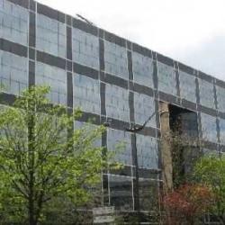 Location Bureau Rueil-Malmaison 1011 m²