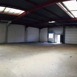 Vente Entrepôt Marsannay-la-Côte 222 m²