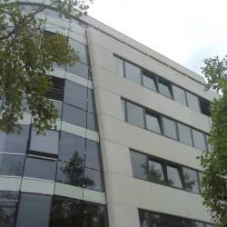 Location Bureau Strasbourg 1582 m²