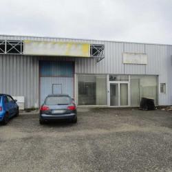 Location Local d'activités Gradignan 334 m²
