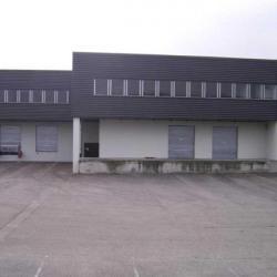 Location Local d'activités Saint-Laurent-de-Mure 2434 m²