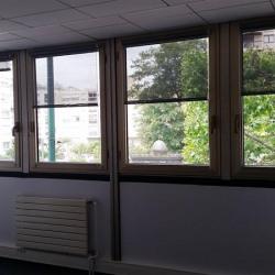 Location Bureau Nogent-sur-Marne 250 m²