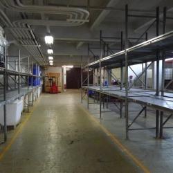 Location Entrepôt Bezons 2400 m²