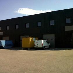 Location Local d'activités Vaulx-en-Velin 180 m²