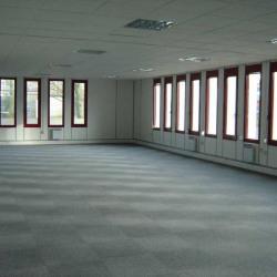 Location Bureau Les Ulis 4414 m²