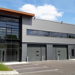 Location Local d'activités Croissy-Beaubourg (77183)