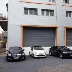 Location Local d'activités Le Blanc-Mesnil 3555 m²