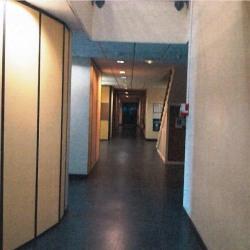 Location Bureau Bourg-de-Péage 875 m²
