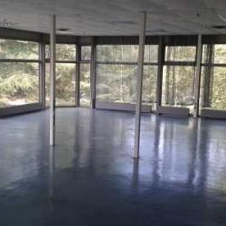 Location Local d'activités Trappes 2242 m²