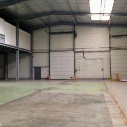 Location Local d'activités Villeneuve-sous-Dammartin 1400 m²