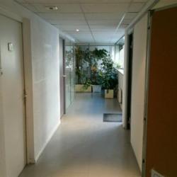 Vente Bureau Lyon 8ème (69008)
