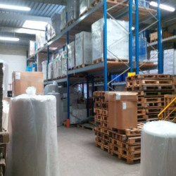 Vente Local d'activités Torcy 300 m²
