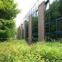 Location Bureau Villiers-sur-Marne 361 m²