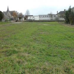 Vente Terrain Neuvy-le-Roi 560 m²