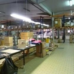 Vente Local d'activités Lesquin 4120 m²