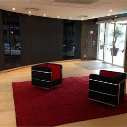 Location Bureau Villeurbanne 1254,4 m²