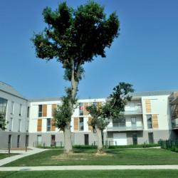 location Appartement 4 pièces Betton