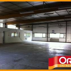 Vente Local d'activités Limoges 510 m²