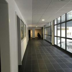 Vente Bureau Strasbourg 277 m²