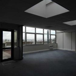 Location Bureau Noisy-le-Grand 387 m²