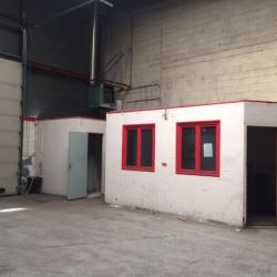 Location Local d'activités Bonneuil-sur-Marne 268 m²