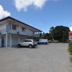 Location Local commercial Cayenne 190 m²