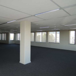 Location Local commercial Fresnes 300 m²