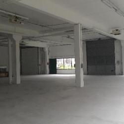 Vente Local d'activités Villepinte 720 m²