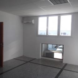 Location Local d'activités Vénissieux 270 m²