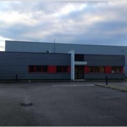 Vente Local d'activités Vaulx-en-Velin 1529 m²